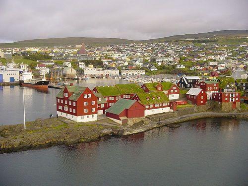 casas con techo verde