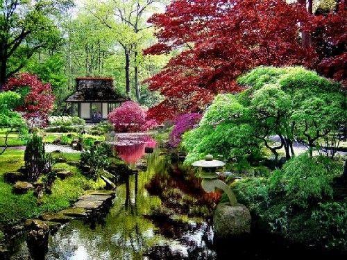 paisajes-de-japon-jardines