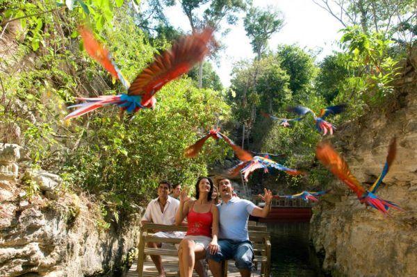 Descubre la riqueza cultural de México
